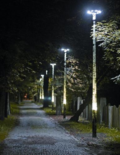 Słupy oświetleniowe imitujące drzewa