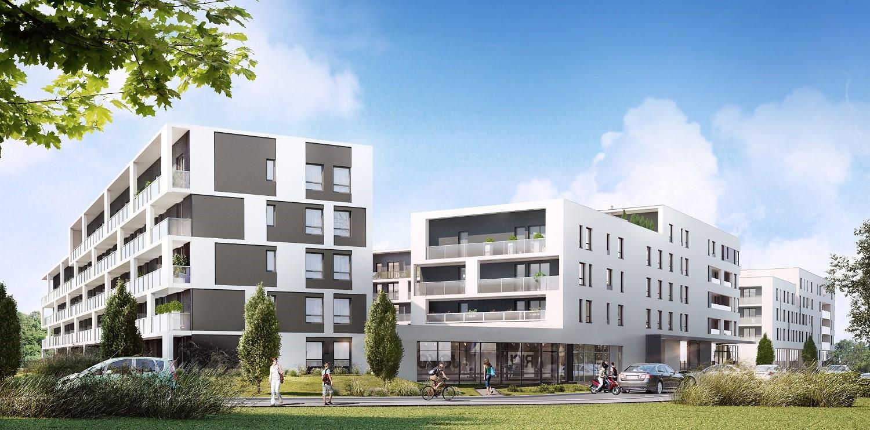 Plany budowy mieszkań muszą uwzględniać wzrost liczby singli