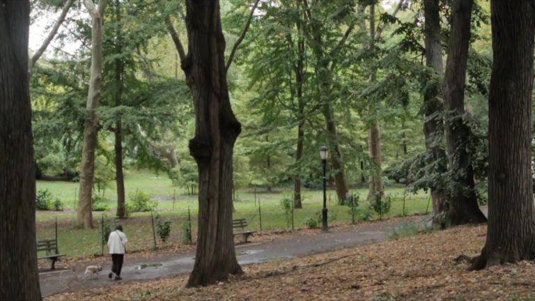 Majówka w lesie lub nad jeziorem? Zadbaj o ochronę przed kleszczowym zapaleniem mózgu.