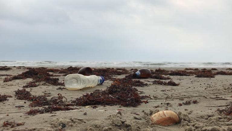 Jak powstrzymać plastikowe opakowania? Pomoże w tym system kaucyjny!