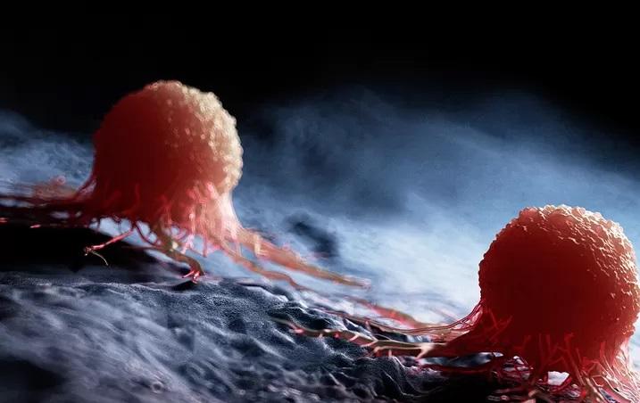 Nanocząstki skuteczne w walce z nowotworami?