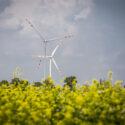 TAURON buduje 11 farmę wiatrową