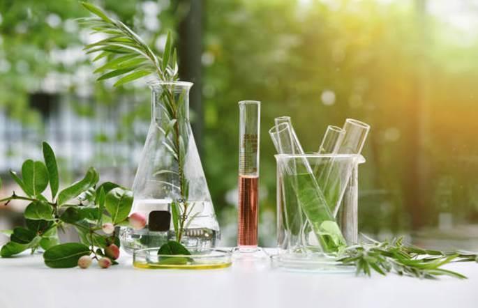 Skorzystaj z natury – wpływ składników naturalnych na skórę