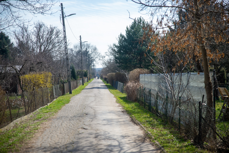 Kolejne dofinansowanie dla ogrodów działkowych w Warszawie