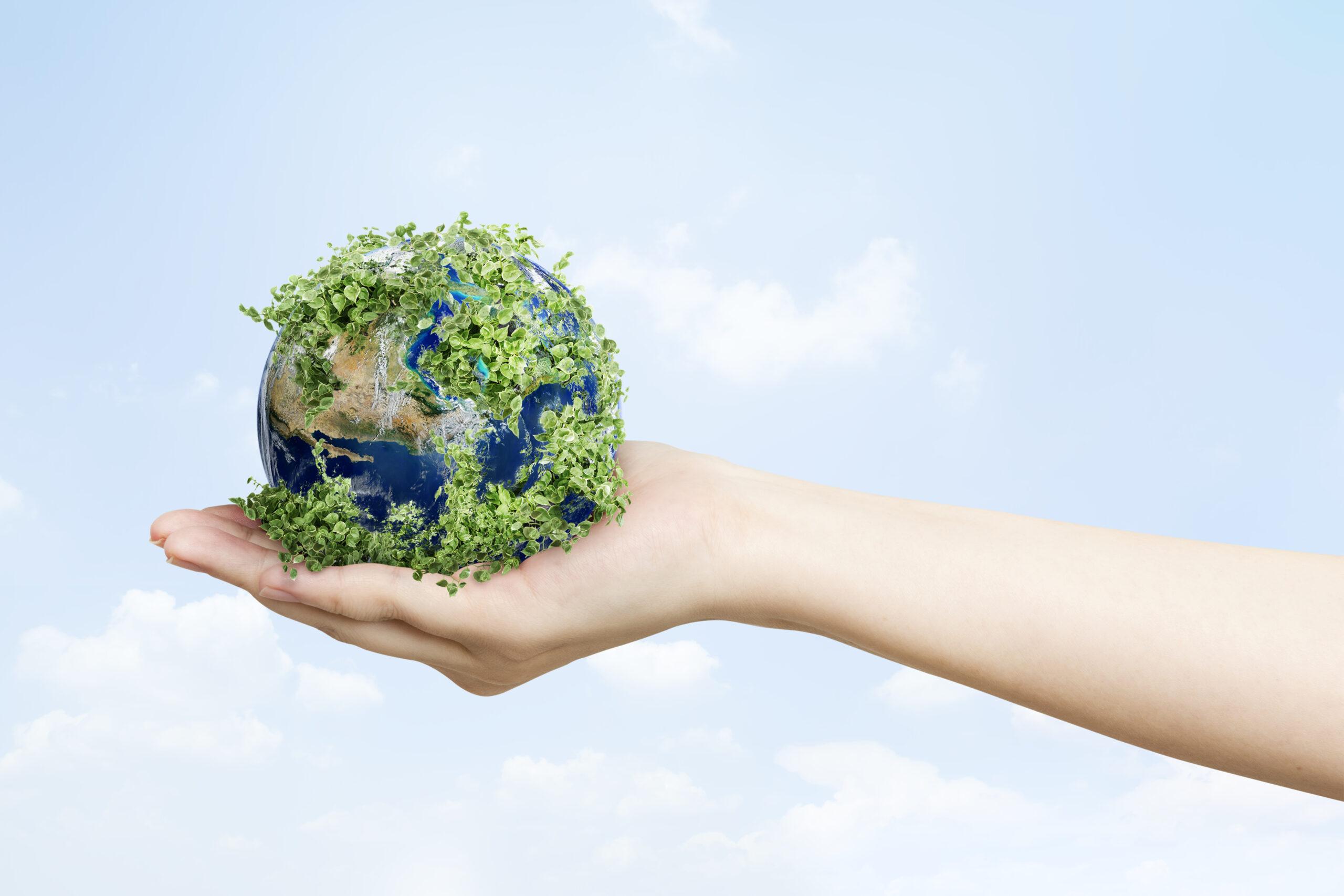 """Zielona energia doceniona przez polski biznes. Respect Energy z """"Medalem Europejskim"""" Business Centre Club"""