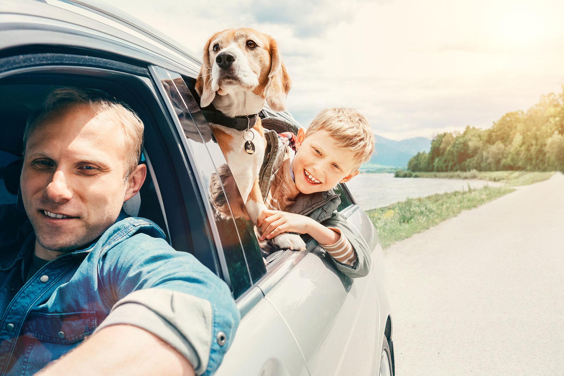 Zwierzaki na urlopie – o czym warto pamiętać wybierając się na wspólne wakacje?