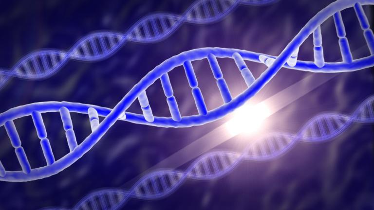 Po ciemnej stronie genomu – czego nie wiemy o naszych genach?